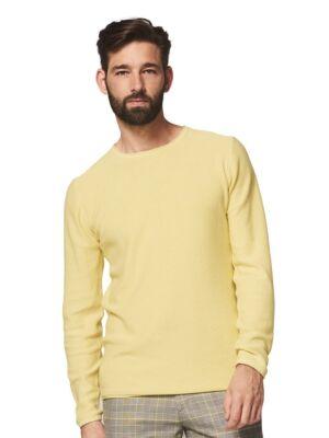 Pamučni muški džemper - Dstrezzed
